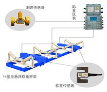 ICS-ST 礦用電子皮帶秤